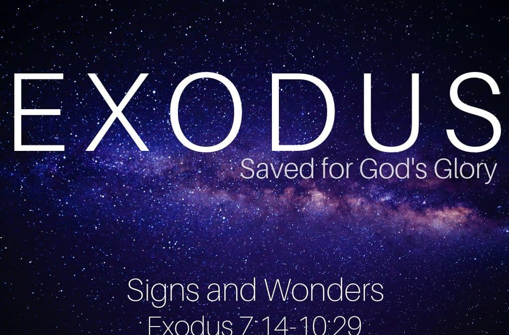 Exodus: Signs and Wonders