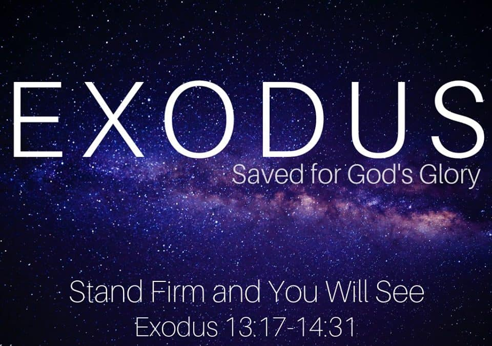 Exodus: Stand Firm and You Will See
