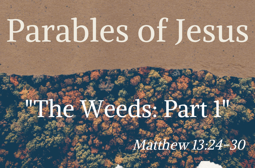 Parables of Jesus:The Weeds pt 1