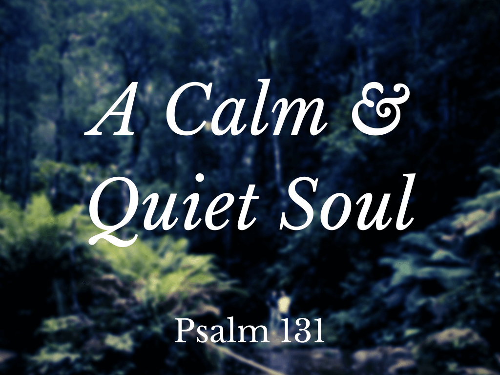 calm and quiet soul