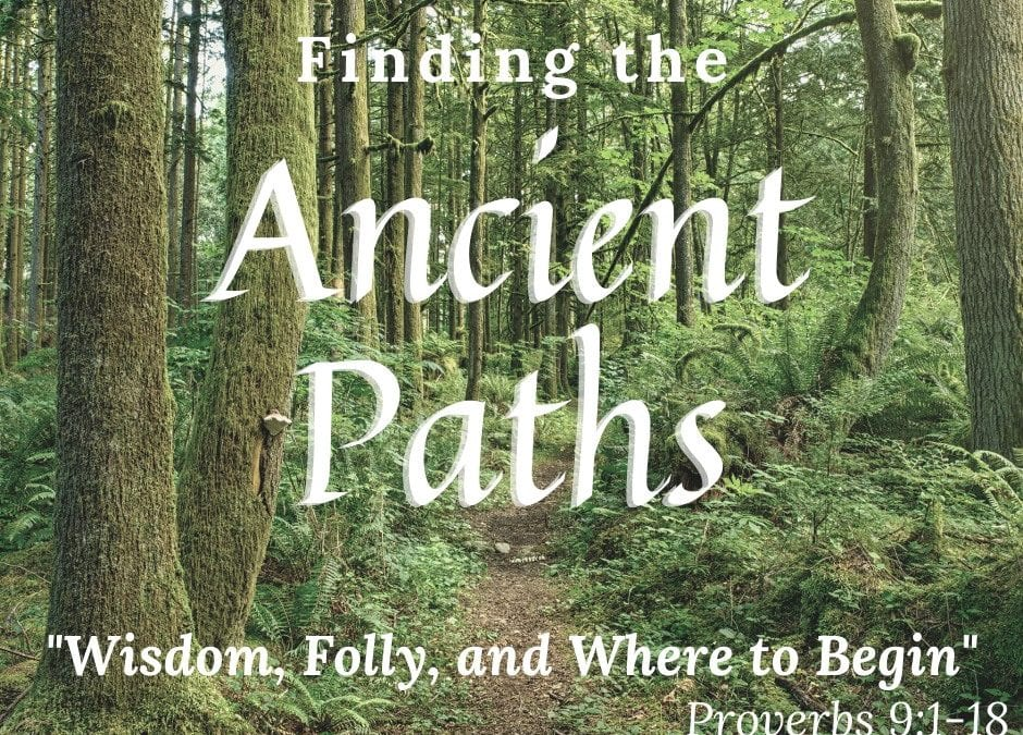 Wisdom, Folly and Where to Begin